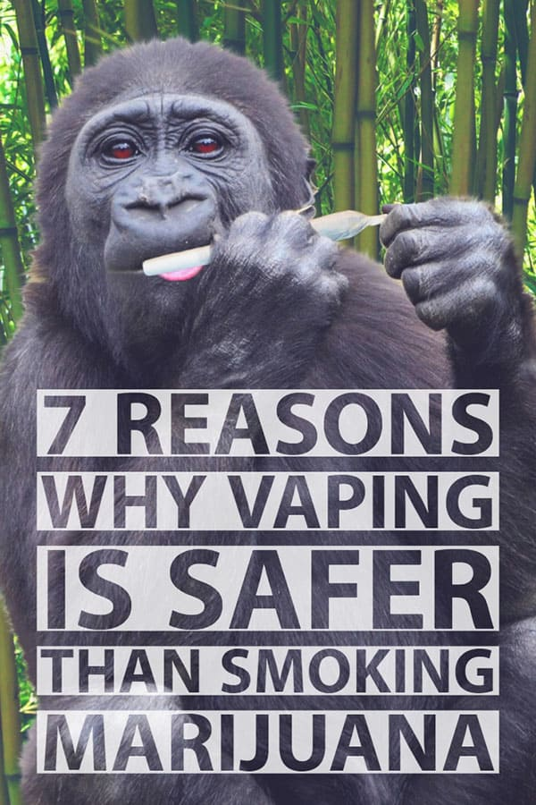 REASONS WHY VAPING CANNABIS ISSAFER THAN SMOKING MARIJUANA
