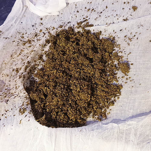 WATERCURING WEED THE CHEESECLOTH METHOD