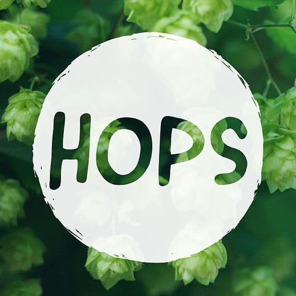 CAN YOU VAPE HOPS