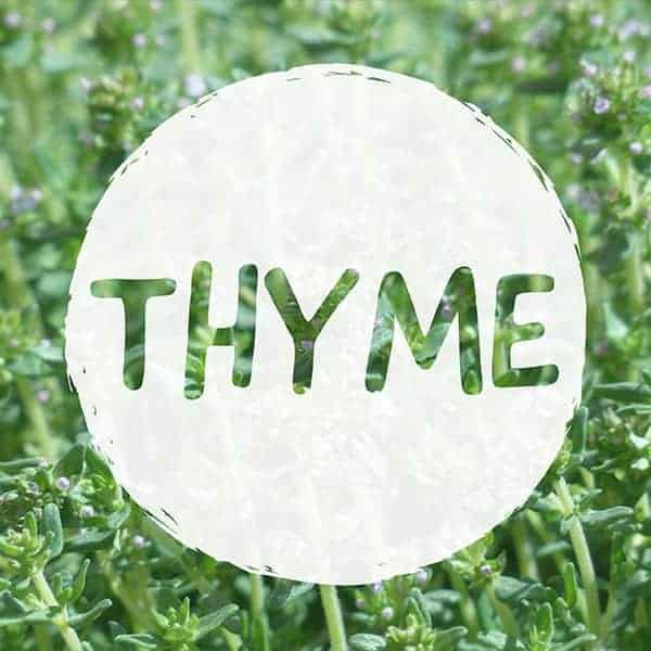 CAN YOU VAPORIZE THYME 1 1