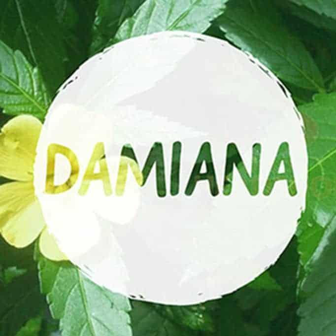 CAN YOU VAPE DAMIANA 1 1 1